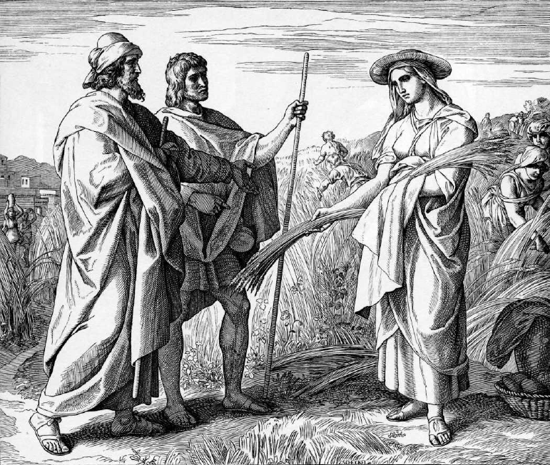 иллюстрация к библии КНИГА РУФЬ глава 2