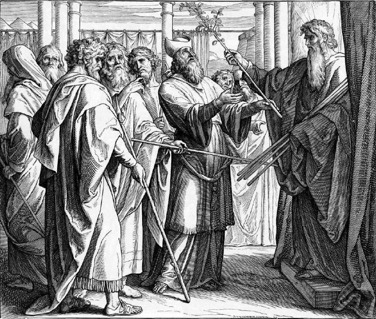 иллюстрация к библии ЧИСЛА глава 17
